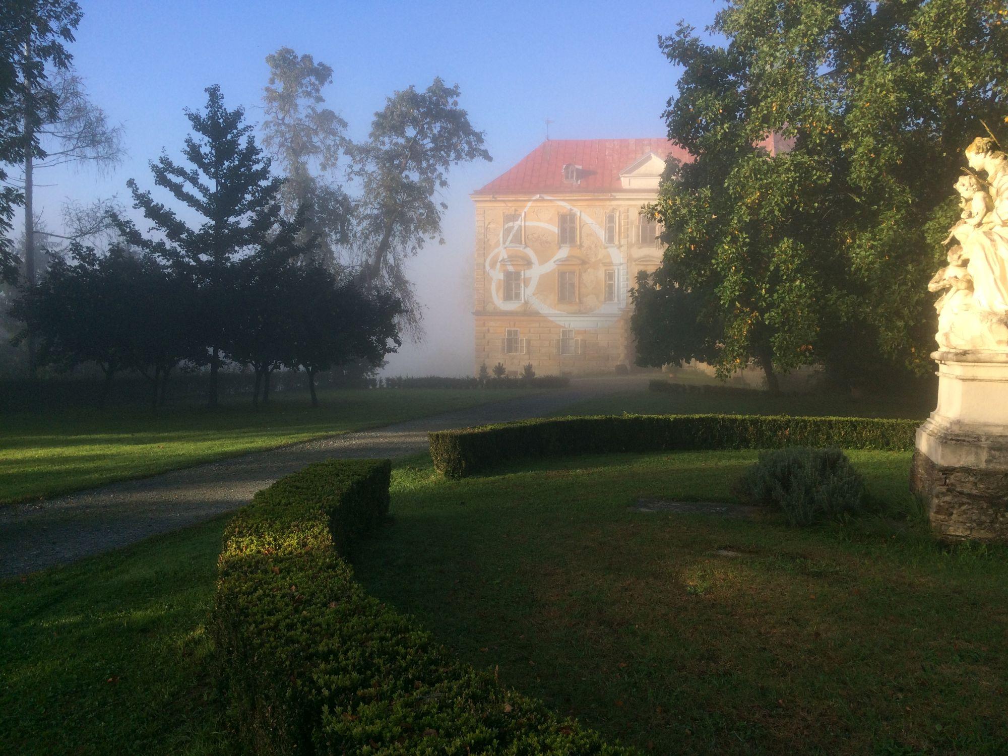 Quitten und Buchsbaum Gestaltung Schlosspark Hornegg
